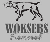 Woksebs Kennel